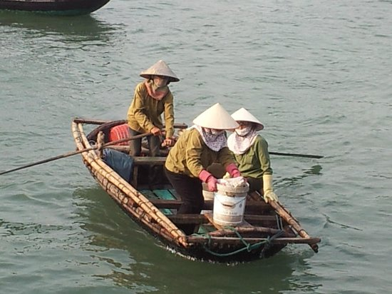 Hotel Phu Thanh: lady rowers transport people from the fish hatcheries to shore