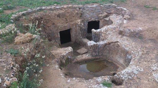 La necropoli di Anghelu Ruju: Anghelu Ruju
