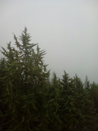 Ilgo Hotel: Vista camera con nebbia ! ! !