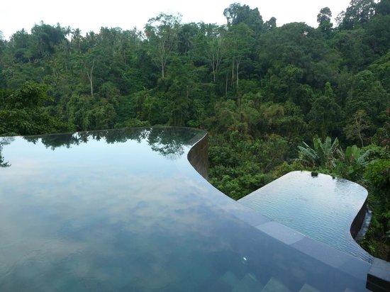 Infinity pool picture of hanging gardens of bali payangan tripadvisor for Ubud hanging gardens swimming pool price