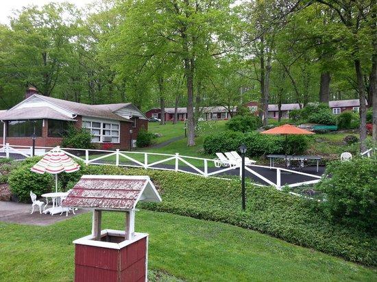 Heidi's Inn : backyard