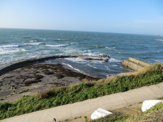 Whitsand Bay Hotel: Harbour