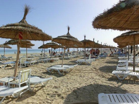 Al Jazira Beach & Spa: la spiaggia