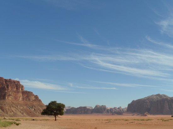 Mohammad Mutlak Camp: The desert