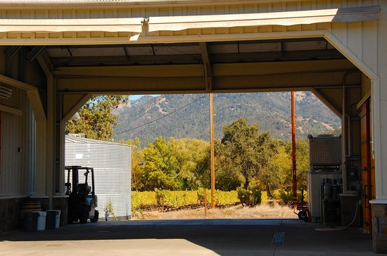 Eclectic Tour: Winemaking at Larkmead