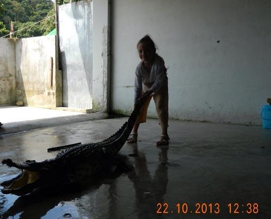 Crocodile & Snake Show Koh Chang: Soboleva Nastya