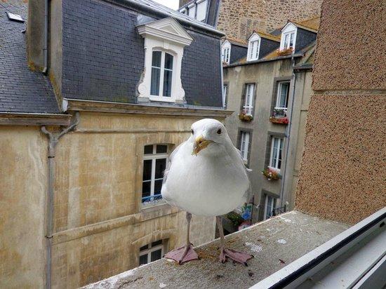 Hotel Anne de Bretagne : вид из окна