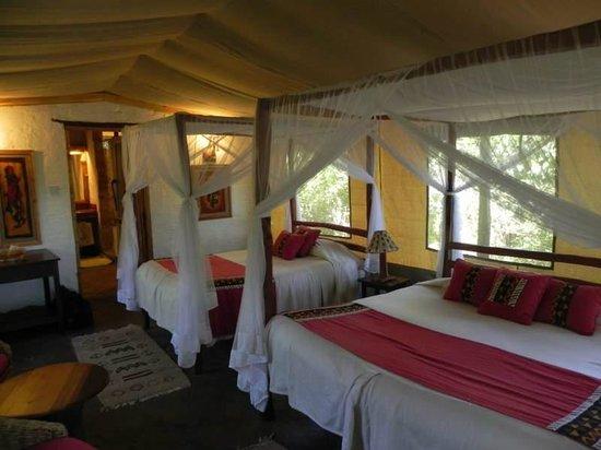 Oloshaiki Camp: intérieur tente