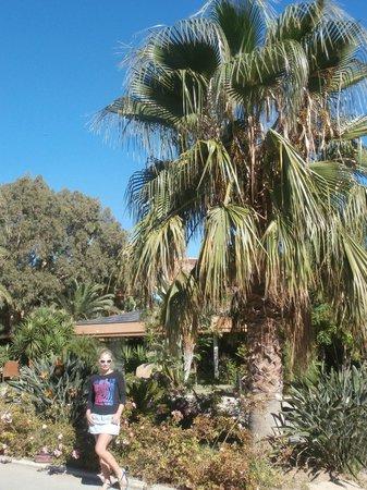 Acacia Resort Parco dei Leoni : parco dei leoni