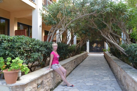 Atlantis Beach Hotel : зеленая арка - дорога в номер.