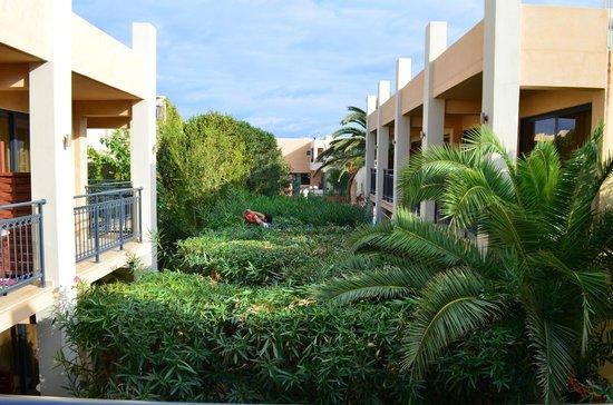 Atlantis Beach Hotel : вид с балкона. это весь сад.