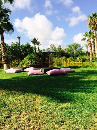 Palais Namaskar: Jardin