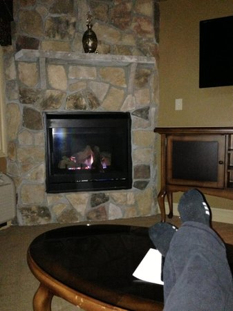 Grand Cascades Lodge : Cozy fireplace IN the living room