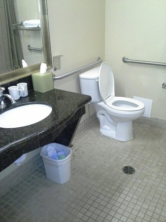 HYATT house Fishkill/Poughkeepsie: Handicapped bathroom with roll in shower.