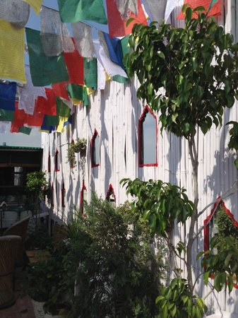 Shanti Home : Rooftop....Prayer Flags...Wonderful!