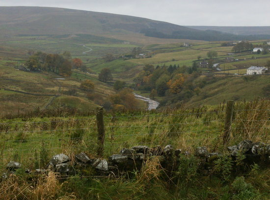 Dales Farm Upper Weardale: View from the Dales Farm B&B