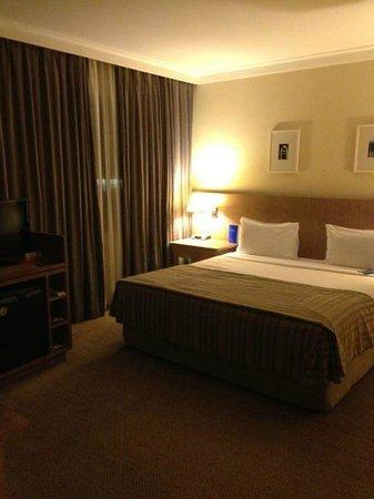TRYP Sao Paulo Berrini Hotel: View of the room
