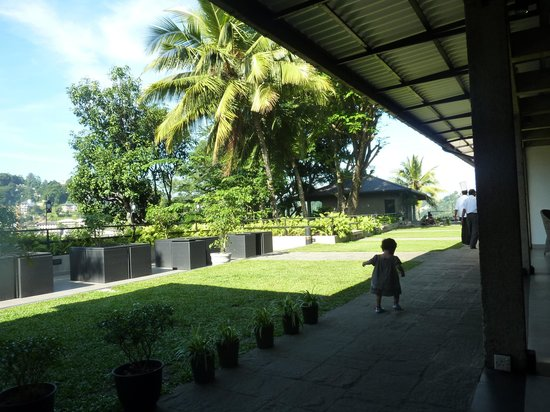 Hotel Thilanka: vue de la terrasse du restaurant