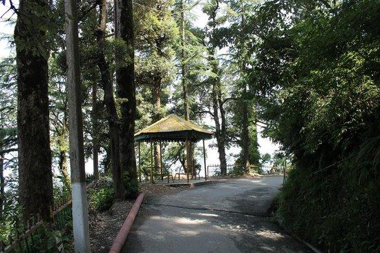 Dalhousie Palace Hotel: Walk from Subhash Chowk
