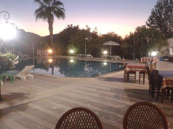Yengec Restaurant: Pool view
