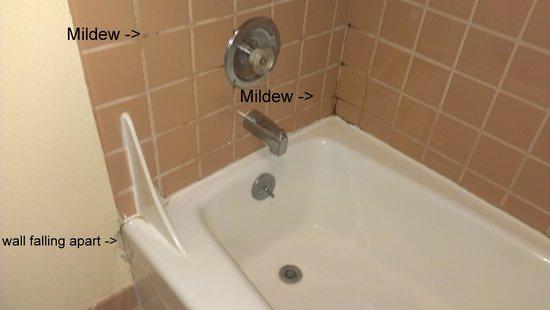 Bellemont Hotel Sun Valley: Gross shower/bath