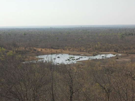 Victoria Falls Safari Lodge: View from our room