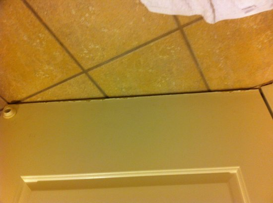 Monumental Hotel Orlando: Bottom of the bathroom door was coming apart and rolling up.