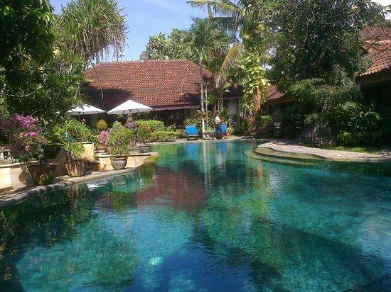Tamukami Hotel: le pool