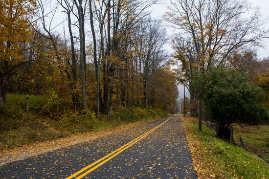 Tyringham Cobble: Autumn road