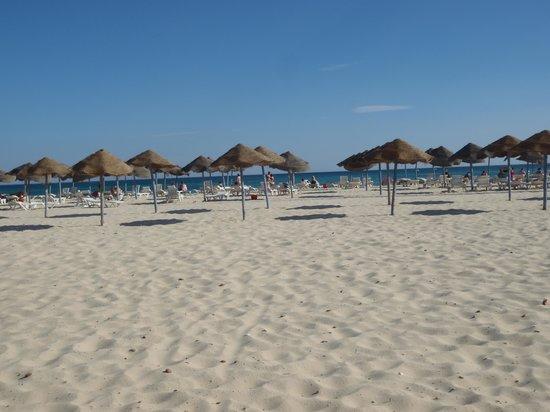 Caribbean World Hammamet Garden : plage à 250m