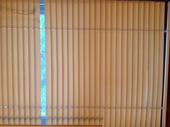 Bearly Rustic Cabin Rentals : blinds missing