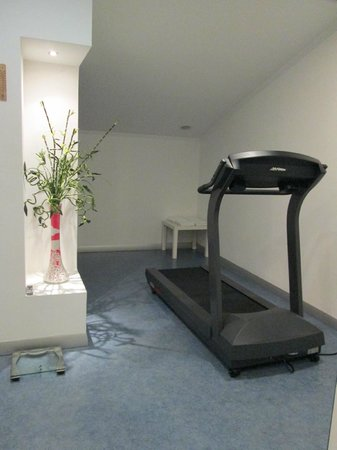 Housez Suites & Apartments: Treadmill in gym.