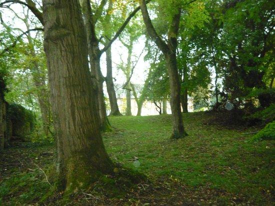 Chateau du Landel: le parc