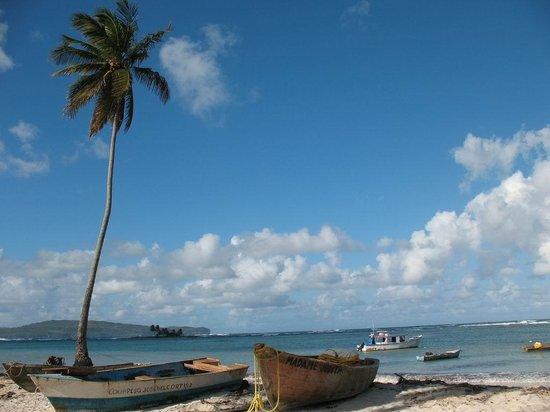 La Loma-Cita: Fishing boats on the beach at Las Galeras.
