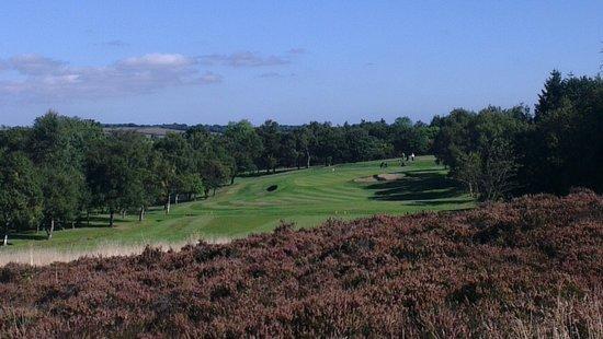 South Moor Golf Club: 15th hole