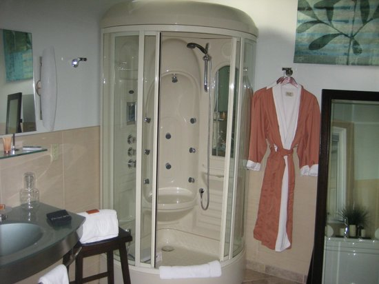 Bronze Antler Bed & Breakfast: High tech shower with steam, massage, music & colored lights