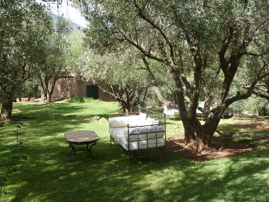 L'Oliveraie de Marigha: Coin repos à côté de la piscine