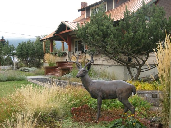 Bronze Antler Bed & Breakfast: Front entrance