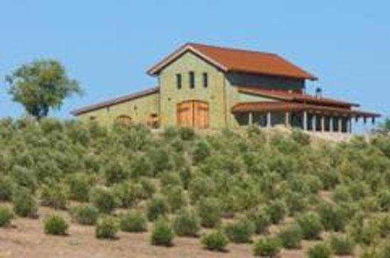 Kiler Ridge Olive Farm: Come visit us and tour our facility at 11am Thursday through Monday.