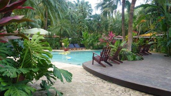 Hotel Pasatiempo: Pool