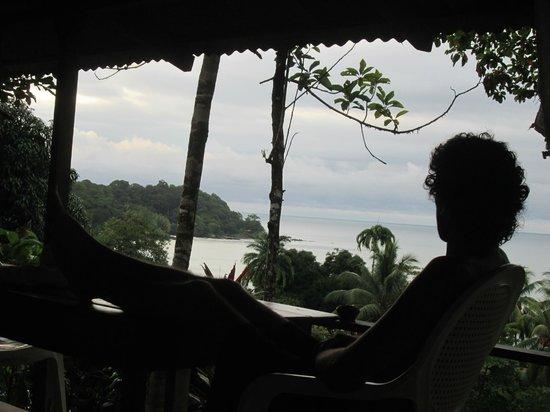 Jade Mar Lodge Cabins: vista desde la cocina