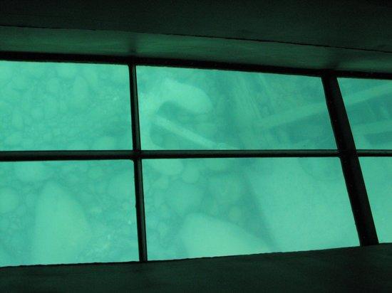 Glass Bottom Shipwreck Tours: Sunken Anchor