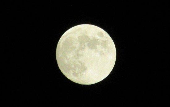 Compass Cove Oceanfront Resort : Fantastic full moon