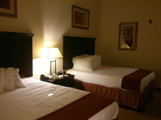 Holiday Inn Express Hotel & Suites Clarksville: Double Bed Room