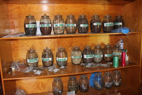 Mayan Medicine Museum: Natural Medicines