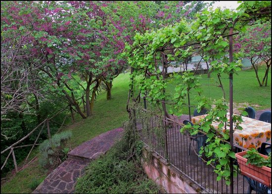 Country Residence Costa del Loco : Вид из номера