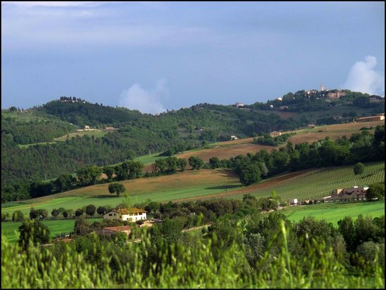 Country Residence Costa del Loco : Пейзажи, открывающиеся с территории отеля