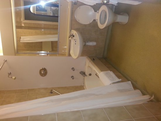 South Milford Hotel: not the standard of bathroom advertised on the website!