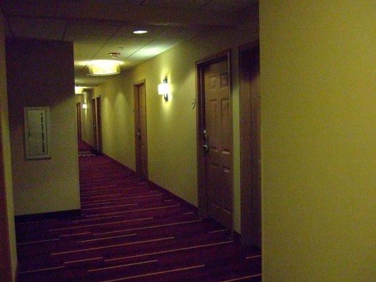 La Quinta Inn & Suites Chicago Downtown: Typical hallway