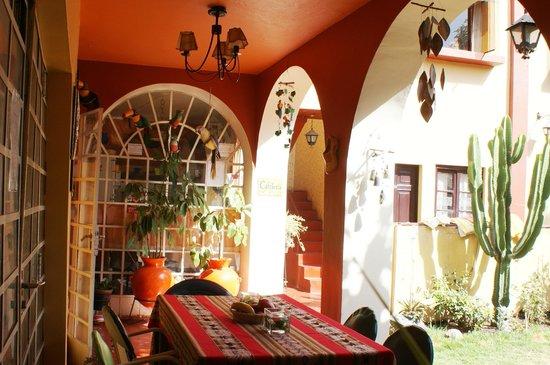 Arequipa Hostel Tambo Viejo B&B: Beautiful terrace looking the flower garden :-)